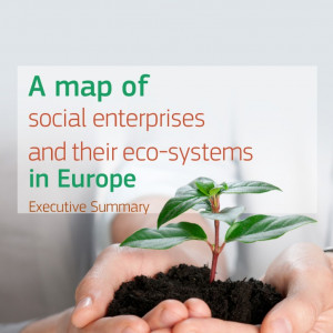 thumbnail of Social Enterprise Ecosytems in Europe