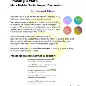 thumbnail of Social Impact Declaration Iridescent Ideas