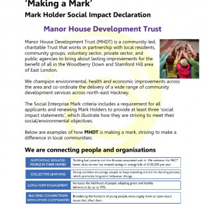 thumbnail of Social Impact Declaration MHDT